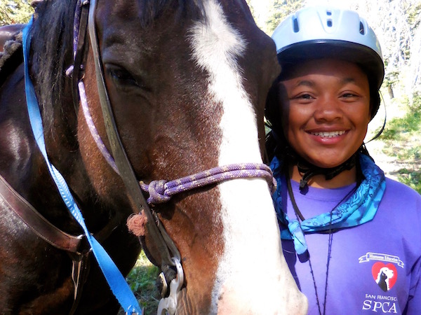 Yellowstone Girls Summer Horse Camp