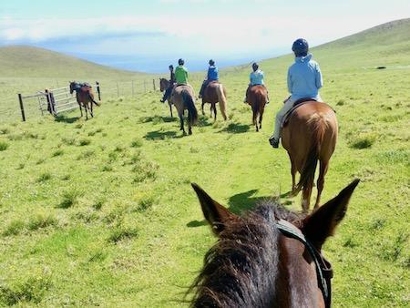 Horse Summer Camp Trip