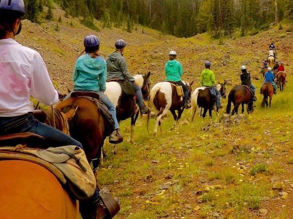 Wilderness Horse Pack Trip MT