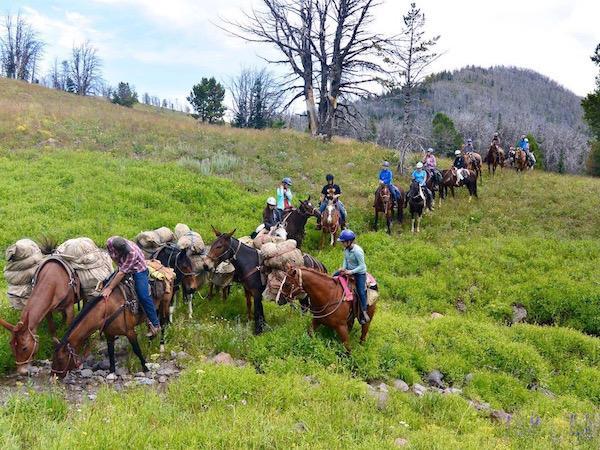Wilderness Horse Pack Trip Montana