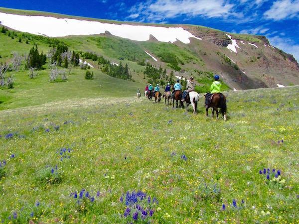 Majestic Big Sky Horse Camp Teens
